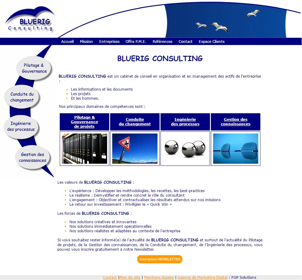 bluerig consulting fgp solutions